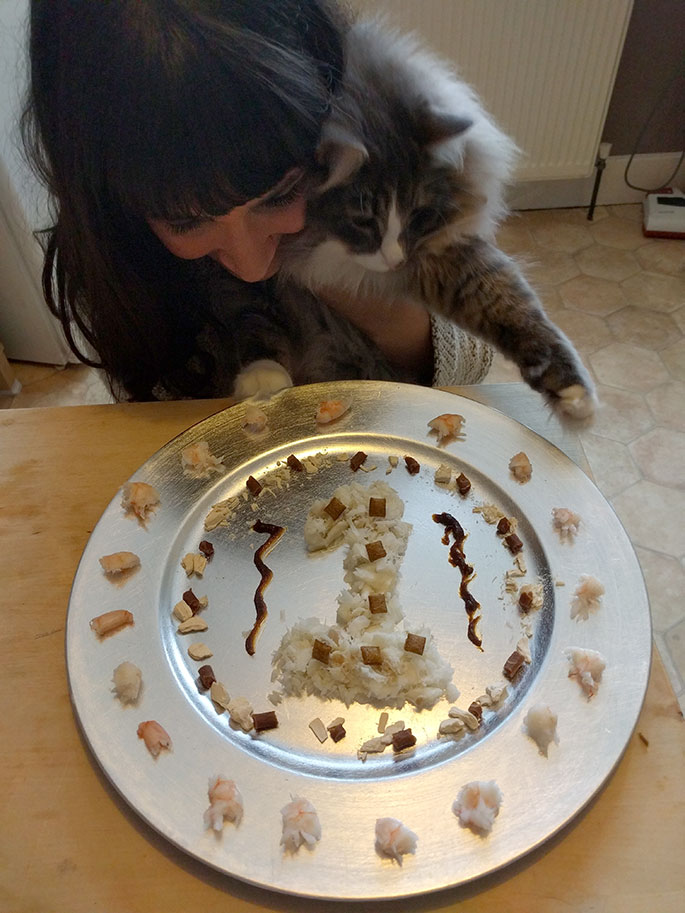 birthday meal cat